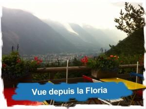 Vallée du trail: vue depuis la floria