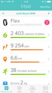 Fitbit Flex Application